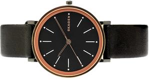 Часы SKAGEN SKW2490